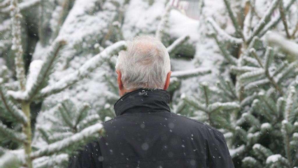 Weihnachtsbaum Kaufen Bremen.Bio Auch Beim Weihnachtsbaum Rhein Main