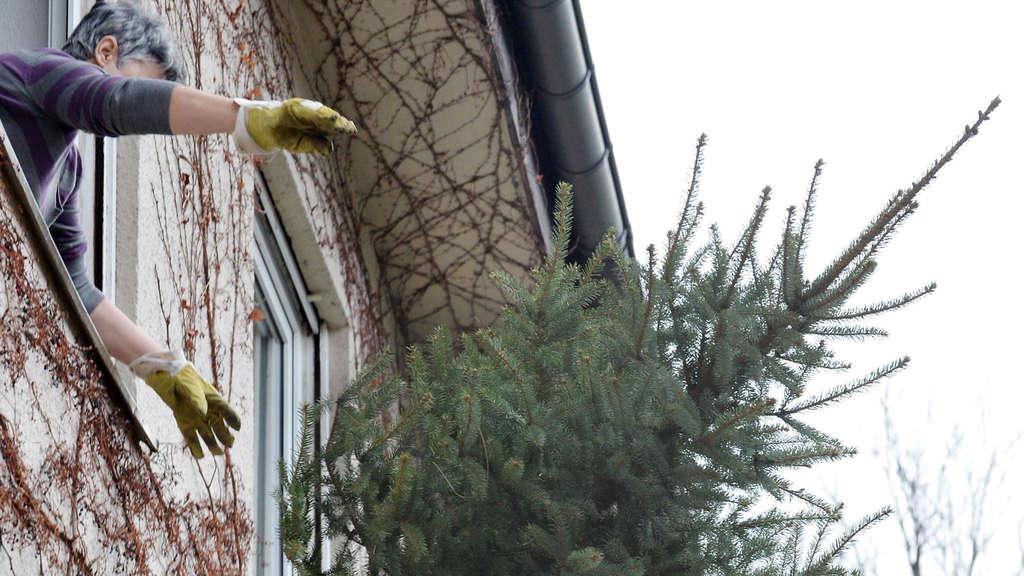 Ikea Weihnachtsbaum.Als Ikea Das Weihnachtsende Erfand Panorama