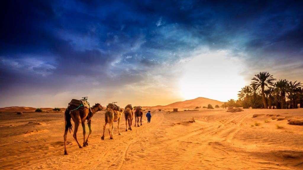 Geführte reisen für singles nach israel