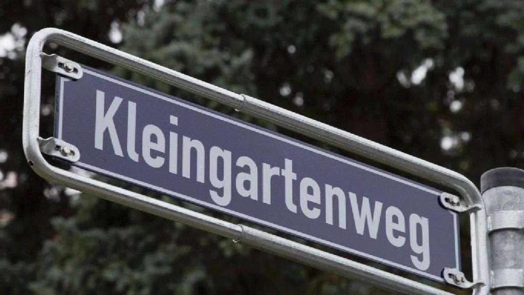 Vegetation im Nordend stärken | Frankfurt