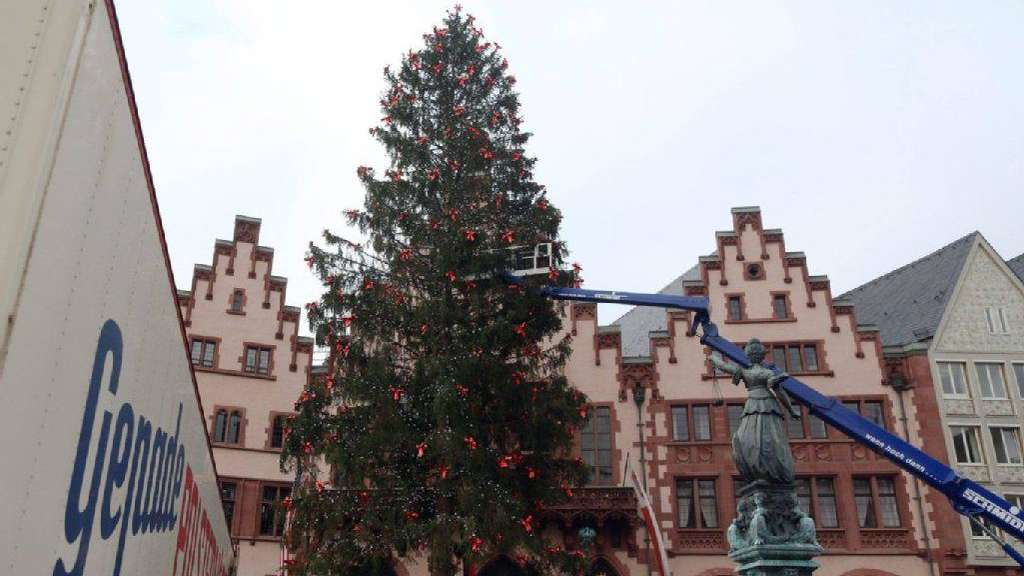 Weihnachtsbaum Frankfurt.Wer Darf Weihnachtsbaum Werden Frankfurt