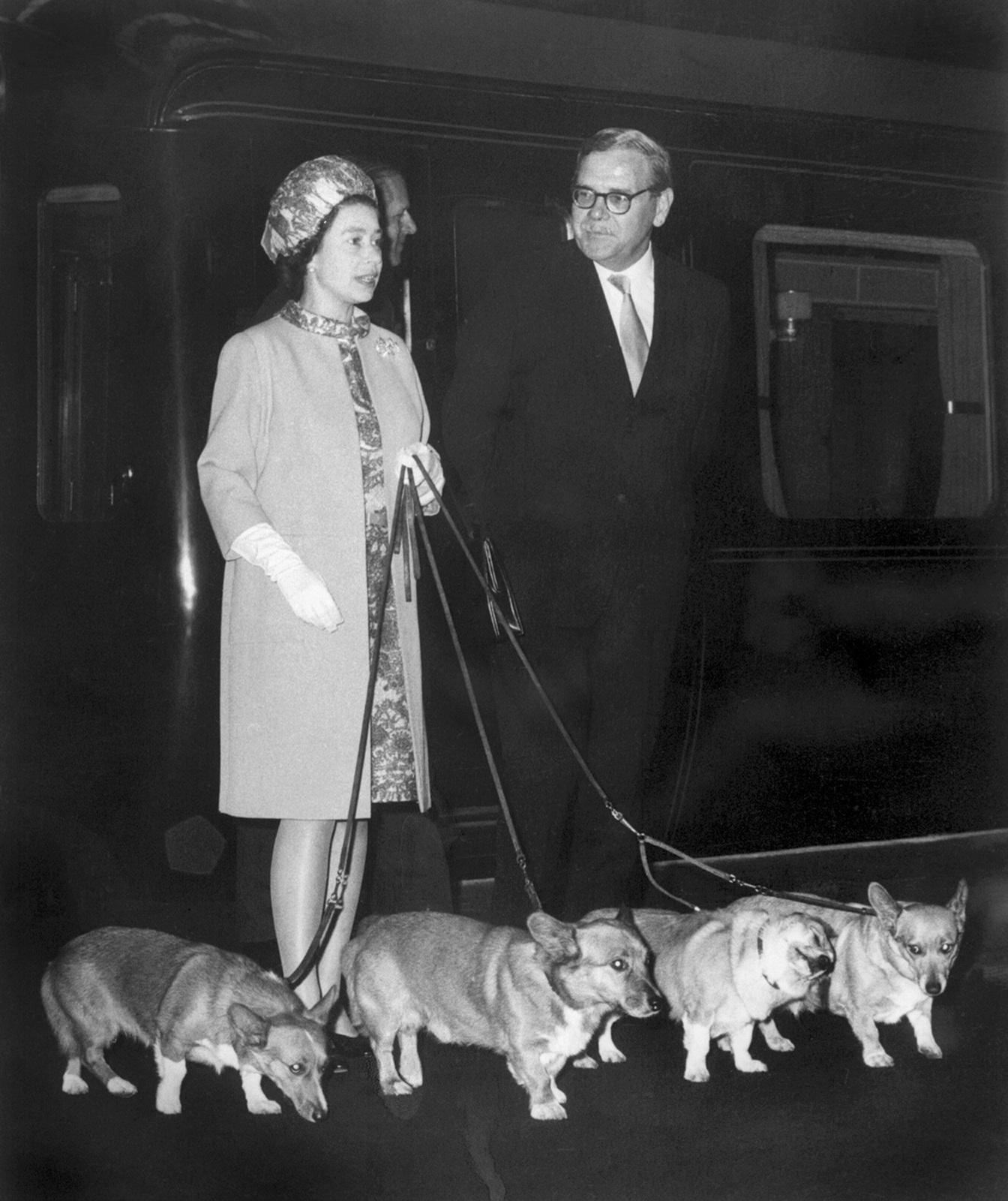 93d4b10c9cf55 AFP Queen Elizabeth II. steigt mit ihren vier Hunden aus dem Zug in London  (15. Oktober 1969).