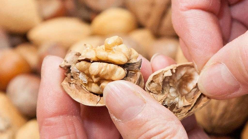 So halten geschälte Nüsse lange | Gesundheit
