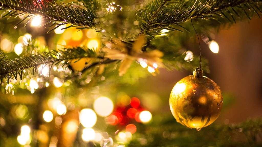 Weihnachtsbaum Klein Echt.Wie Nachhaltig Ist Der Weihnachtsbaum Wissen