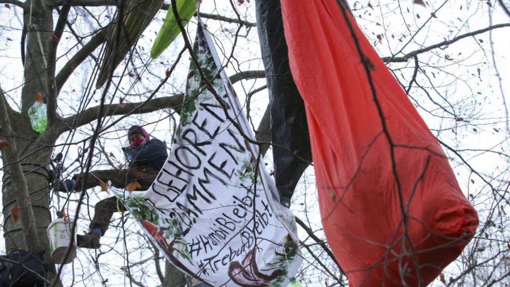 Protest Gegen Fraport Rodung Mörfelden Walldorf