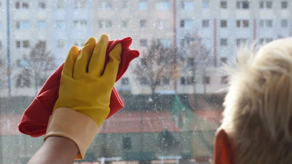 Fensterputzen Mit Strumpfhose Und Zitronensaft Wohnen