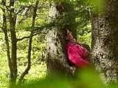 Exercício de atenção plena na floresta. Annette Beringus aconselha você a fazer uma pausa consciente lá. Foto: Manfred Bernjus / embe-Foto