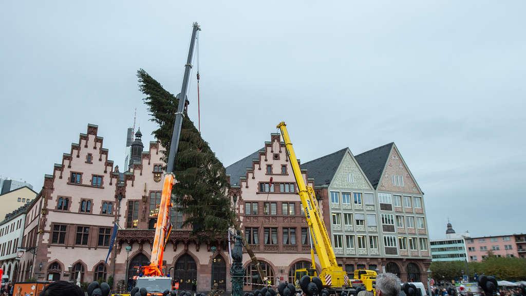 Weihnachtsbaum Frankfurt.Weihnachtsbaum Kommt Heil Auf Römerberg An Spd