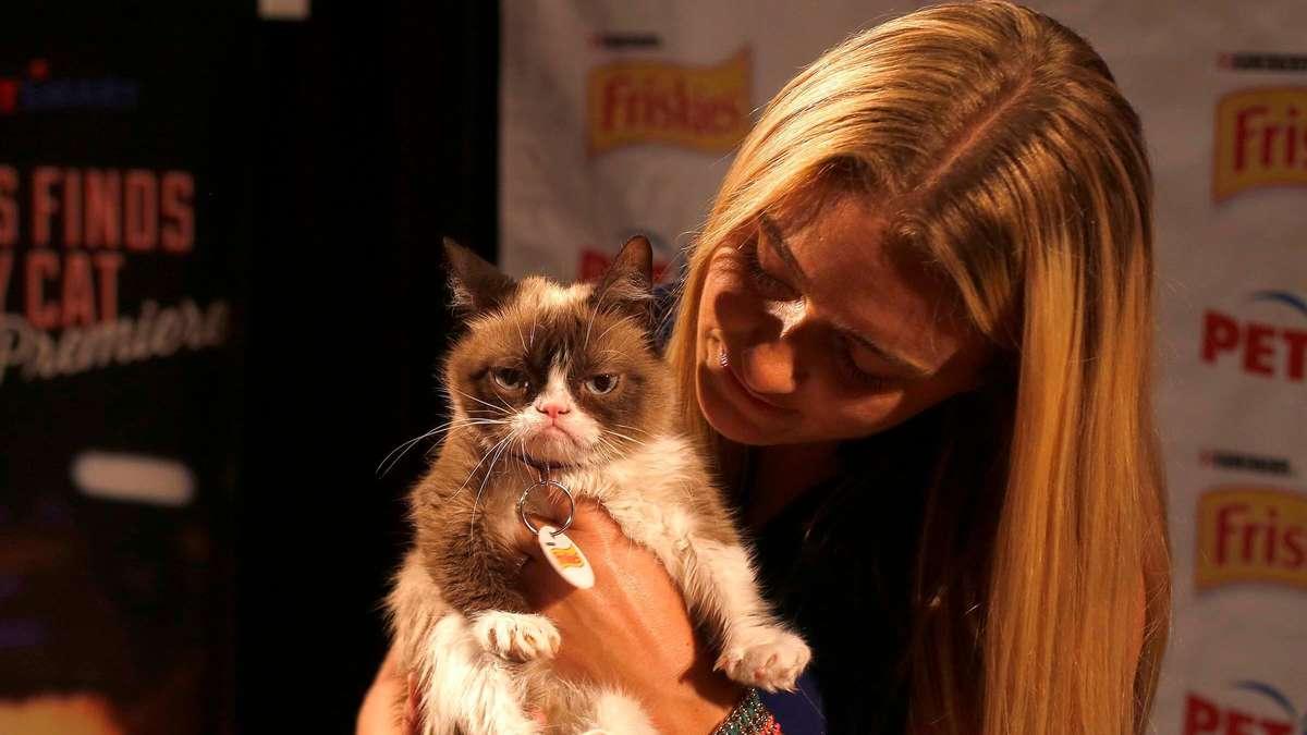 Grumpy Cat Tot