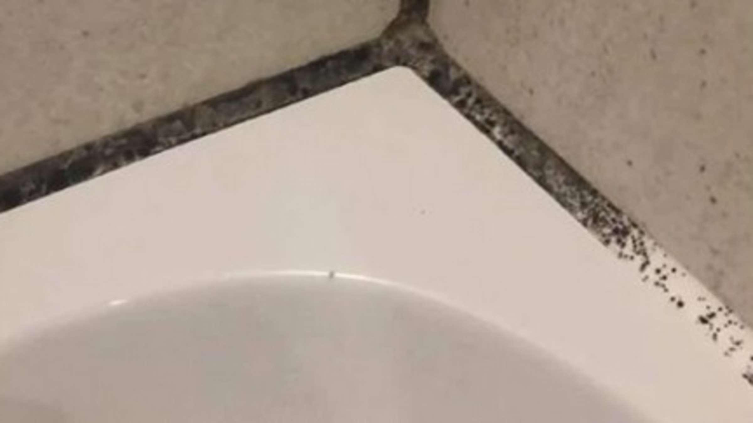 hausmittel gegen schimmel in der dusche